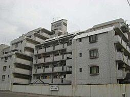 ライオンズマンション薬院第6
