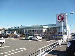 コメリハードアンドグリーン蒲郡形原店(1055m)