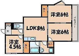 広島県広島市安芸区中野2丁目の賃貸マンションの間取り