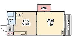 ラフィーヌ新田[203号室]の間取り