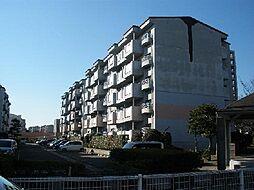 福岡県北九州市若松区久岐の浜の賃貸マンションの外観