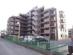 千葉県船橋市高根台1丁目の賃貸マンションの外観