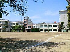 大田区立田園調布中学校