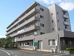 ベルコースト茅ヶ崎[303号室]の外観