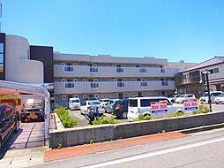 敷島第4マンション[1階]の外観