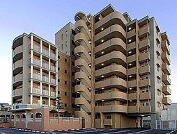 キャメロットリブ[7階]の外観