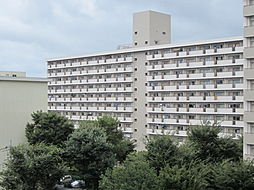 UR梨香台[6-914号室]の外観