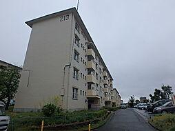 金剛第三住宅213棟[503 号室]の外観