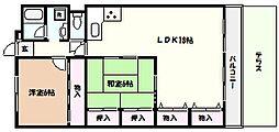 兵庫県芦屋市朝日ケ丘町の賃貸マンションの間取り