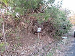 山陰本線 和知駅 徒歩206分