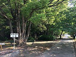 森岡自然公園
