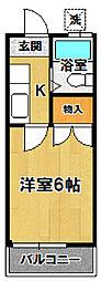 小野崎ハイツ[204号室]の間取り