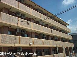 HIYORIー2[4階]の外観