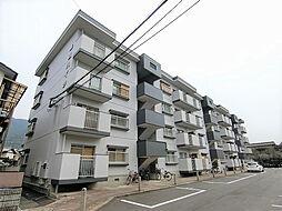 森田ハイツ[301号室]の外観