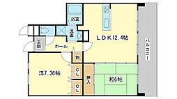 兵庫県姫路市西今宿1丁目の賃貸マンションの間取り