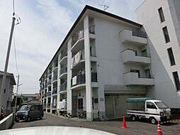広島県広島市中区江波二本松1丁目の賃貸マンションの外観