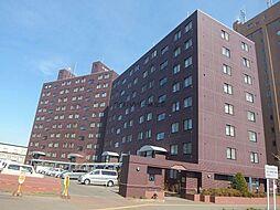 北海道札幌市北区新琴似九条1丁目の賃貸マンションの外観