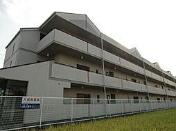 シャングリラ鮎川[1階]の外観