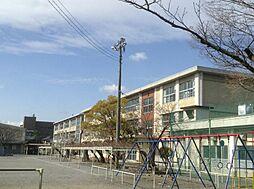岐阜市長良小学校 約270m