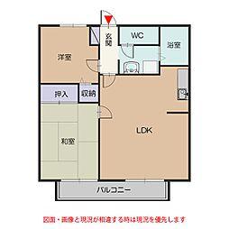 サンライフ飯田[1階]の間取り