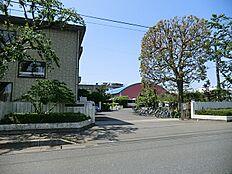武蔵村山市立第十小学校(498m)