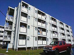 ビレッジハウス勝田3号棟[1階]の外観