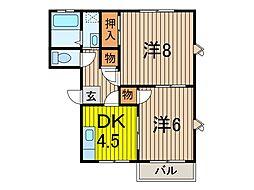 メゾンラフォーレ[A101号室]の間取り