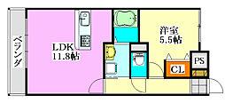 千葉県船橋市高根台1丁目の賃貸マンションの間取り