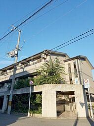 大阪府堺市堺区出島海岸通3丁の賃貸マンションの外観