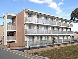 埼玉県三郷市新和4丁目の賃貸マンションの外観