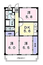 滋賀県甲賀市水口町虫生野の賃貸マンションの間取り