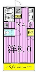 千葉県野田市清水の賃貸アパートの間取り