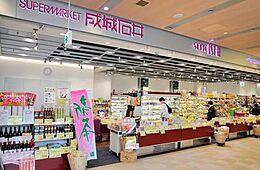 ショッピングセンター成城石井武蔵小金井店まで788m