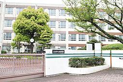 [一戸建] 愛知県名古屋市名東区豊が丘 の賃貸【/】の外観
