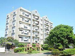 宮崎県宮崎市大王町の賃貸マンションの外観