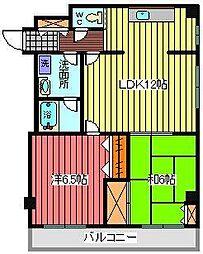 埼玉県川口市南鳩ヶ谷2丁目の賃貸マンションの間取り