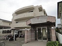 愛媛県松山市越智1丁目の賃貸マンションの外観