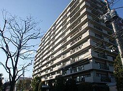 千葉県市川市南大野3丁目の賃貸マンションの画像
