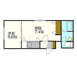 北海道札幌市白石区南郷通20丁目の賃貸マンションの間取り