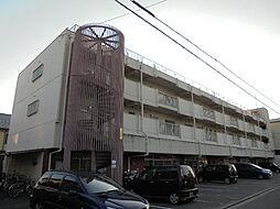 愛媛県松山市中村2丁目の賃貸マンションの外観