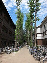 その他京都大学(吉田寮)まで2303m