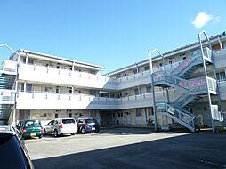 サンスカイまことマンション[203号室]の外観