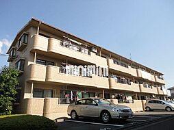 静岡県静岡市葵区竜南3丁目の賃貸マンションの外観