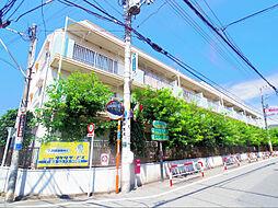 東京都西東京市ひばりが丘北2丁目の賃貸マンションの外観