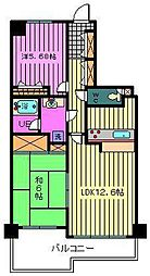 埼玉県川口市本町3丁目の賃貸マンションの間取り