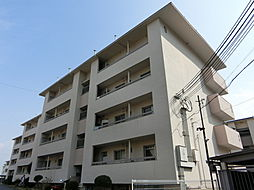 南円明寺ケ丘団地9棟306[3階]の外観