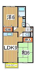 千葉県柏市増尾台1の賃貸アパートの間取り