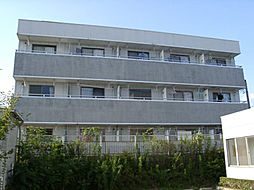 マルベリーハウス[306号室号室]の外観