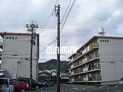 松栄荘A,B[3階]の外観