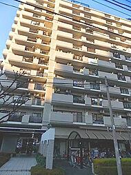 ライオンズシティ川口[9階]の外観